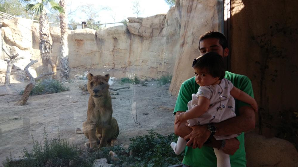 El zoo de Oasys mini Hollywood del desierto de Tabernas en Almeria.