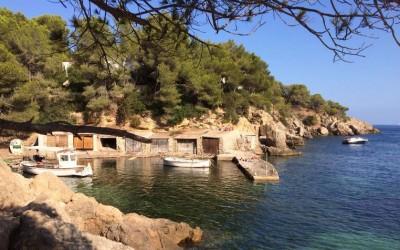 Ibiza : Un bullit en Can Bigotis